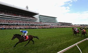 Ryan Moore rides Protectionist to win the 2014 Melbourne Cup (Photo by Robert Cianflone/Getty Images)