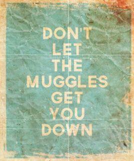 HP Muggles
