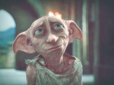 A Dobby