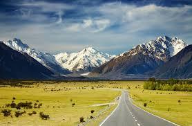 Kiwi NZ landscape